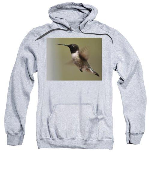 Black-chinned Hummingbird Sweatshirt