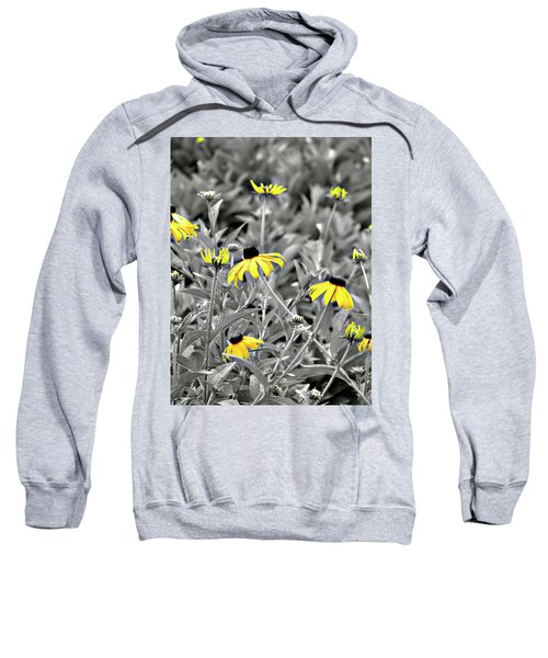 Black-eyed Susan Field Sweatshirt