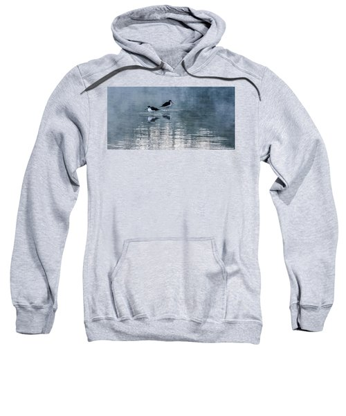 Black-necked Stilts Sweatshirt