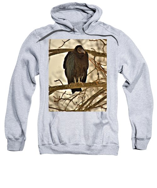 Black Vulture 1 Sweatshirt