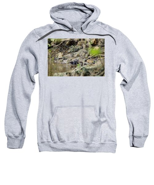 Sweatshirt featuring the photograph Blackbird Bathing At The Flint River by Kim Pate
