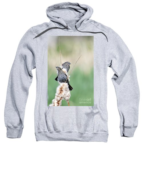 Blackbird Pair Sweatshirt