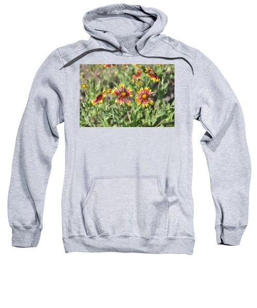 Blanketflower Sweatshirt