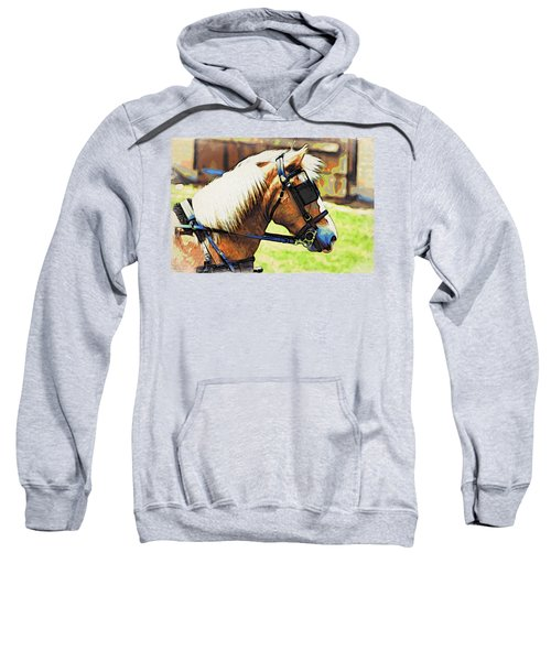 Blinders Sweatshirt