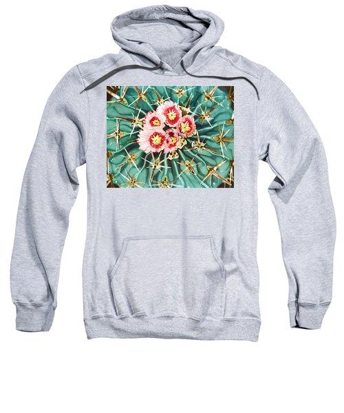 Bloomin' Horse Crippler Cactus Sweatshirt