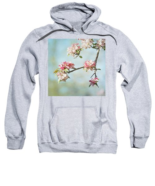 Blossom Branch Sweatshirt