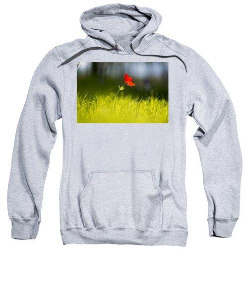 Blossomed Megiddo 1 Sweatshirt