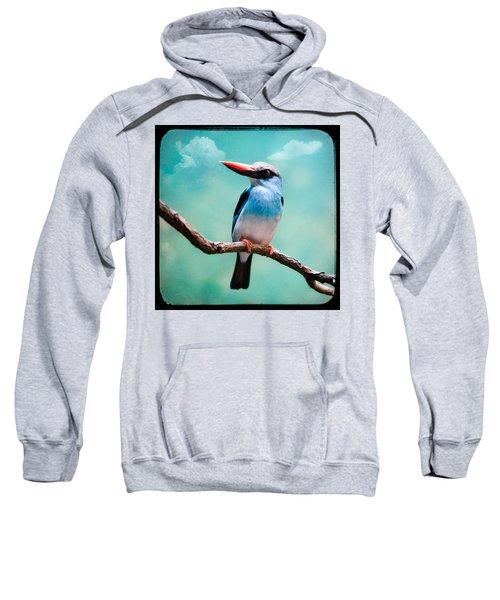 Blue Breasted Kingfisher Sweatshirt