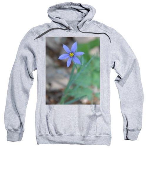 Blue Flower Sweatshirt