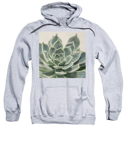 Blue Green Succulent Sweatshirt