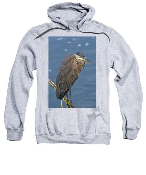 Sweatshirt featuring the photograph Blue Herron by Jim Thompson