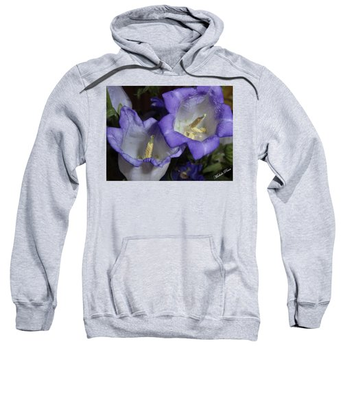 Blue Persuasion Sweatshirt