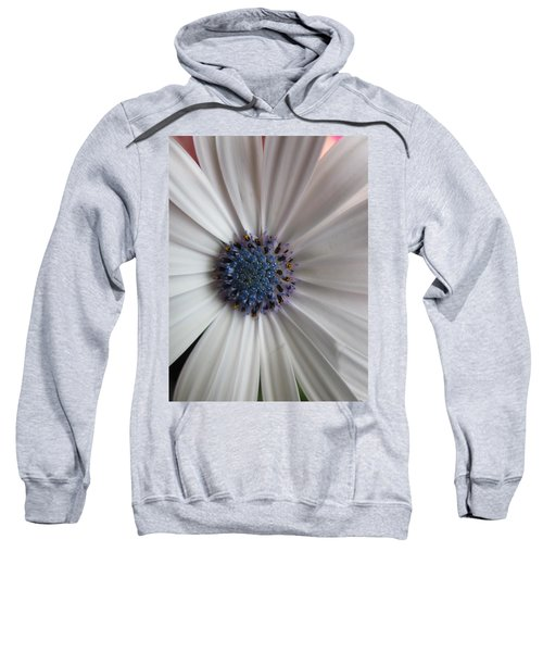 Blue-white Loveliness Sweatshirt