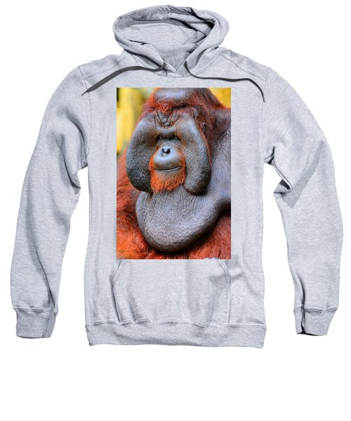 Bornean Orangutan Iv Sweatshirt by Lourry Legarde