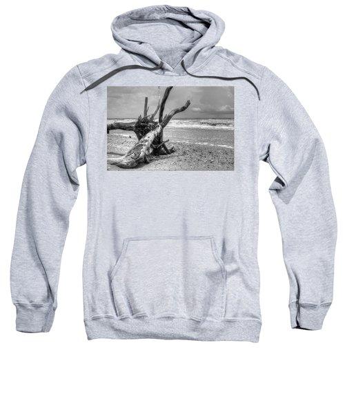 Botany Bay Sweatshirt
