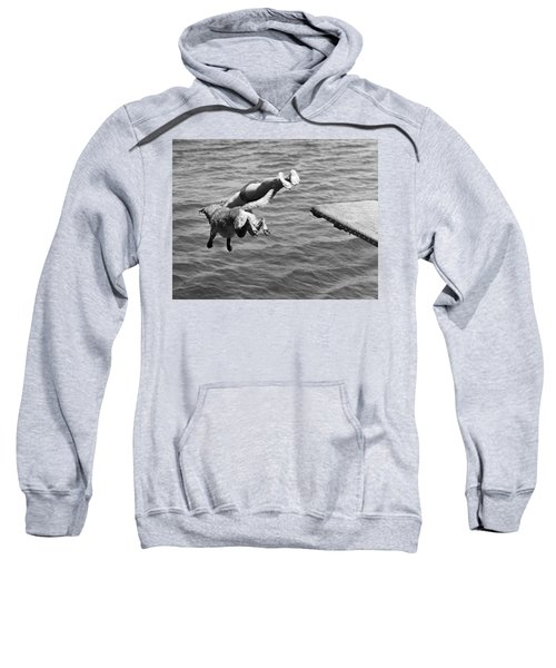 Boy And His Dog Dive Together Sweatshirt
