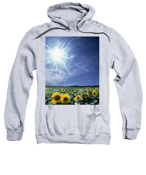 Bright Burst Of White Light Above Field Sweatshirt