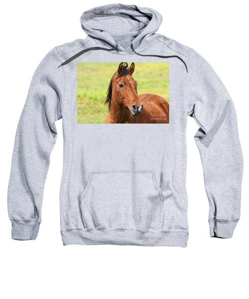 Brown Beauty Sweatshirt
