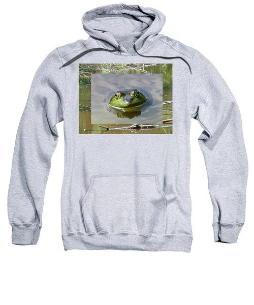 Bull Frog And Pond Sweatshirt