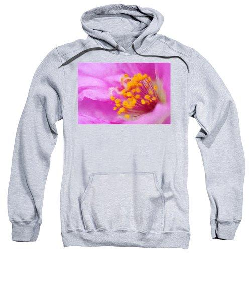 Buttercup Confection Sweatshirt