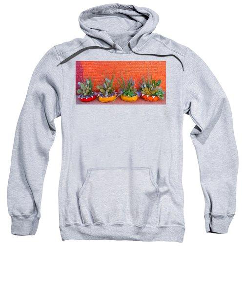 Cacti Quartet Sweatshirt
