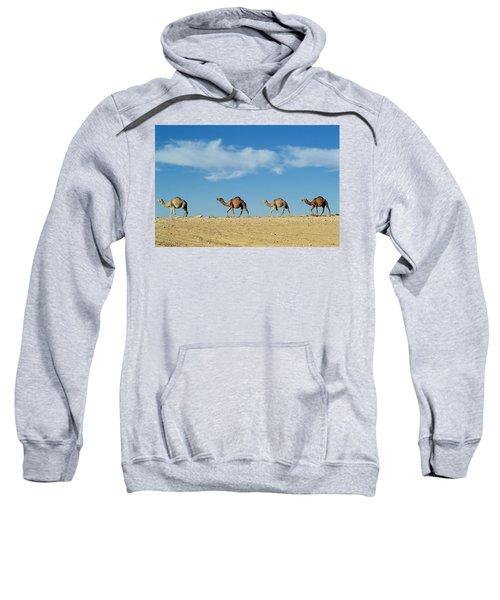 Camel Train Sweatshirt