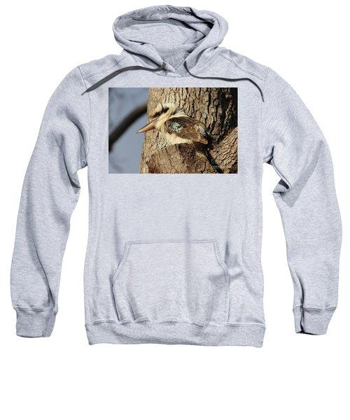 Can Anybody See Me? Sweatshirt