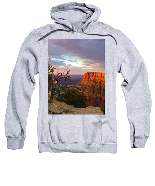 Canyon Rim Tree Sweatshirt