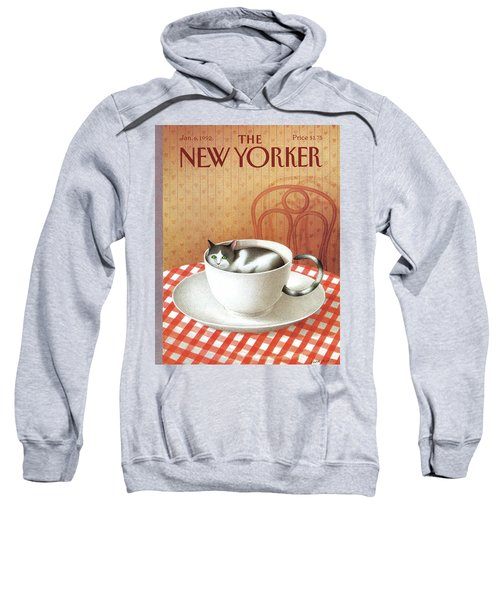 Cat Sits Inside A Coffee Cup Sweatshirt