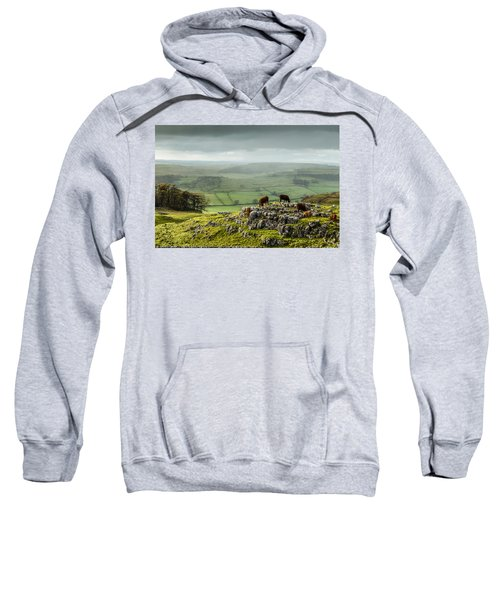 Cattle In The Yorkshire Dales Sweatshirt
