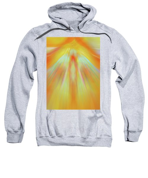 Celestial Flight Sweatshirt
