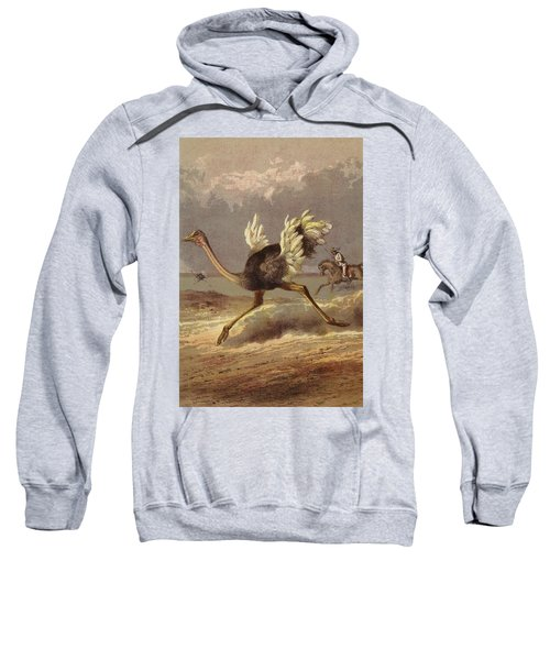 Chasing The Ostrich Sweatshirt