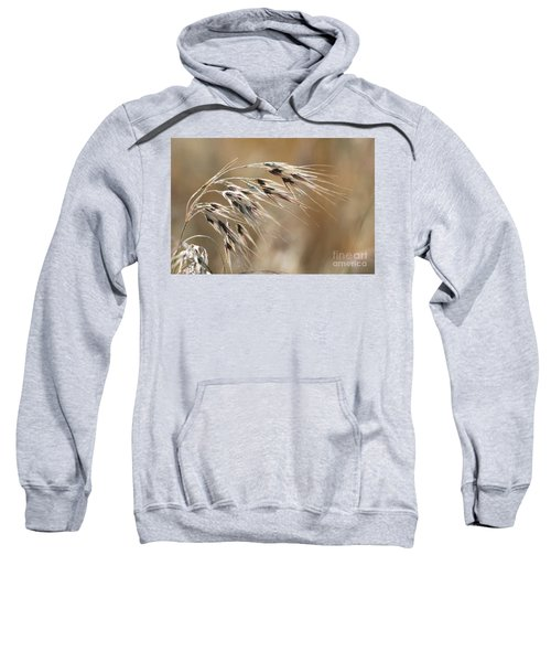 Cheatgrass Bromus Tectorum Sweatshirt