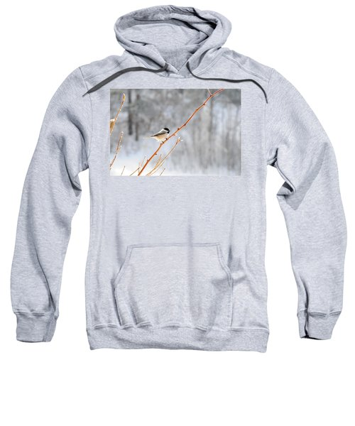 Chickadee Sweatshirt
