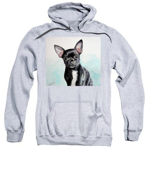 Chihuahua Black Sweatshirt