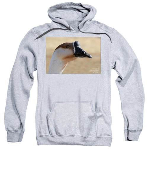 Chinese Watchdog 2 Sweatshirt
