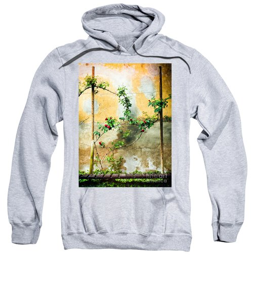Sweatshirt featuring the photograph Climbing Rose Plant by Silvia Ganora