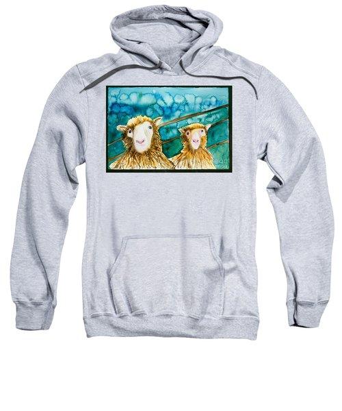 Cloning Around Sweatshirt
