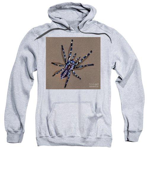 Cobalt Blue Tarantula Sweatshirt