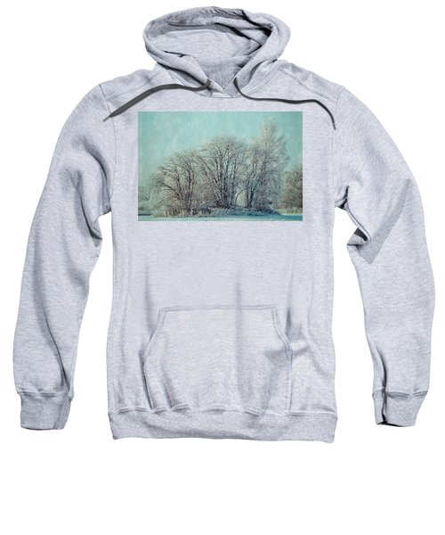 Cold Winter Day Sweatshirt