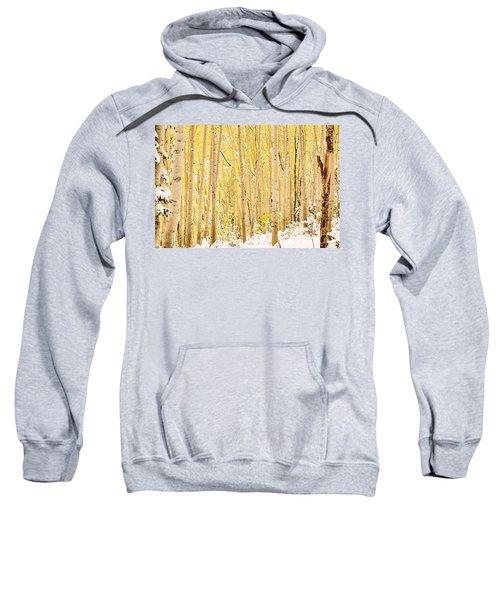 Colored Pencils Sweatshirt