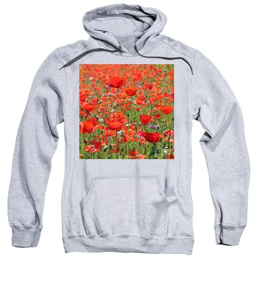 Commemorative Poppies Sweatshirt