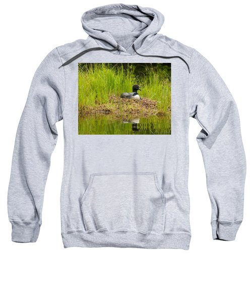 Common Loon Nesting Sweatshirt