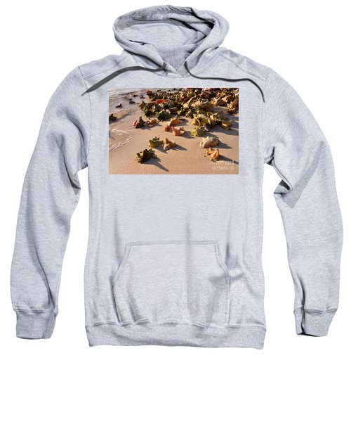 Conch Collection Sweatshirt