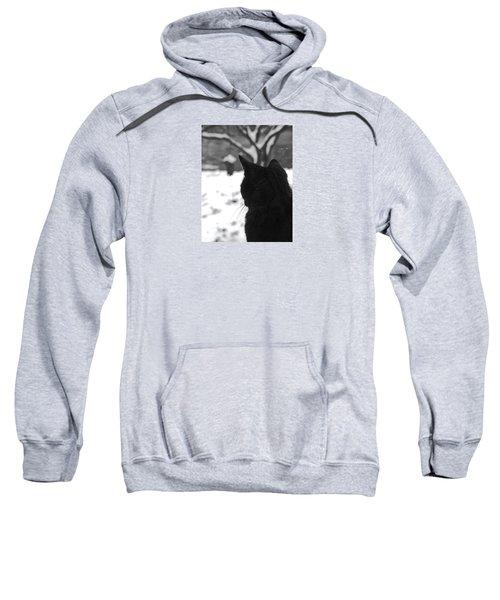 Contemplating Winter Sweatshirt
