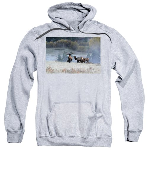 Cool Misty Morning Sweatshirt