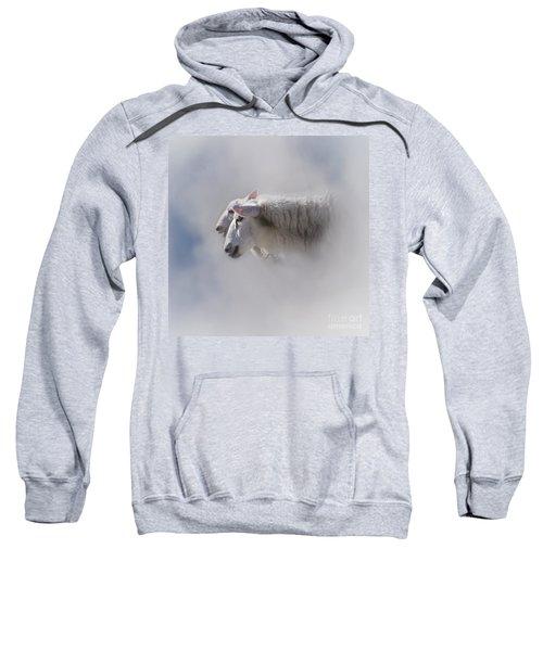 Counting Sweatshirt