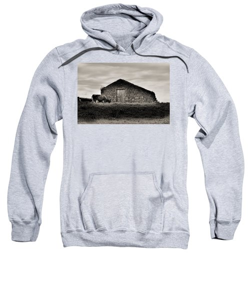 Sweatshirt featuring the photograph Cow Grazes At Rustic Barn  by Joseph Amaral