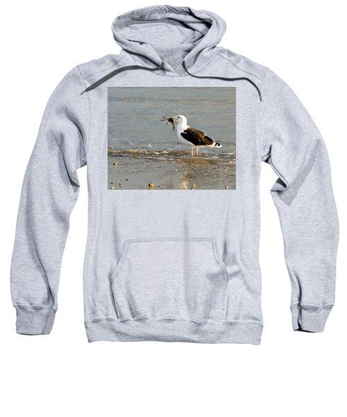Crab For Dinner Sweatshirt