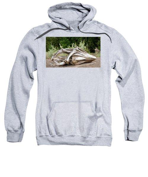Cranial Drift Sweatshirt